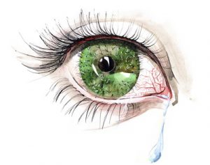 cactus eye (series C)