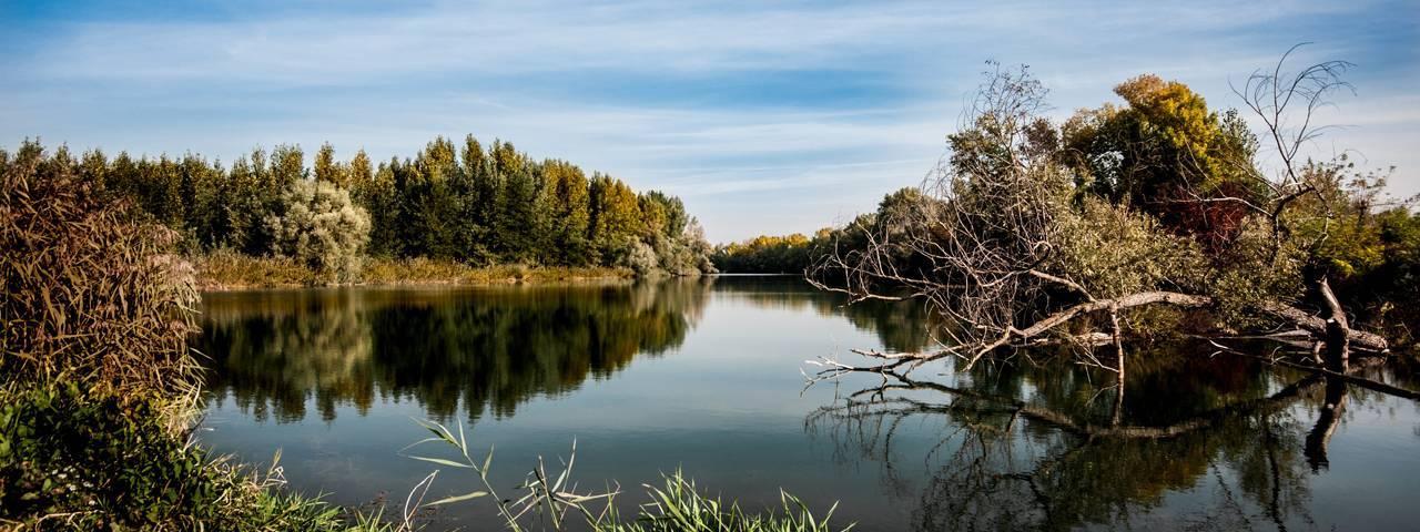 autumn_lake slide