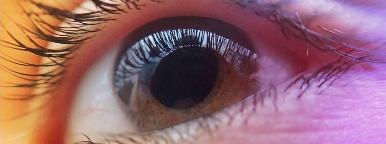 closeup eye