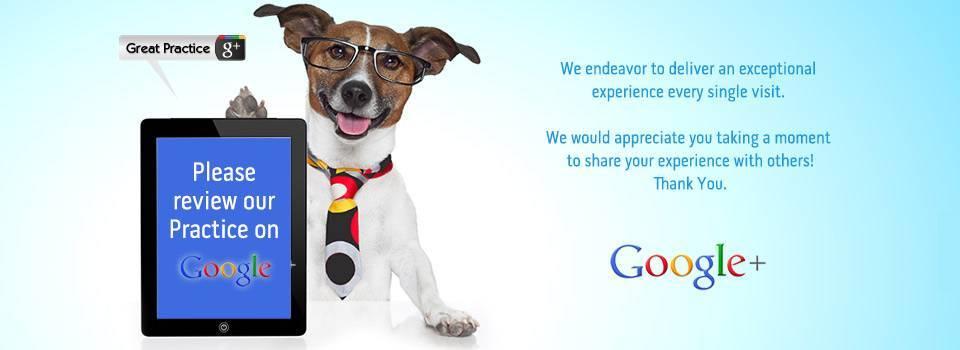 googlereview-slideshow