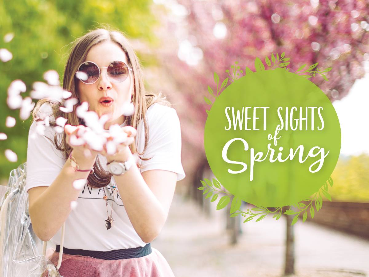 sweet sights of spring