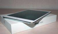 Mini_iPad_1_new