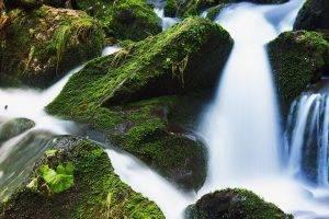 Waterfall, Insurance