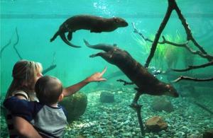 statenisland zoo