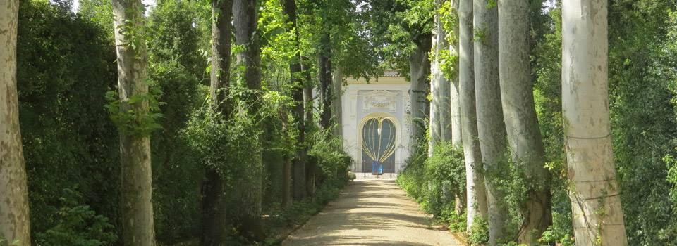 path-through-park
