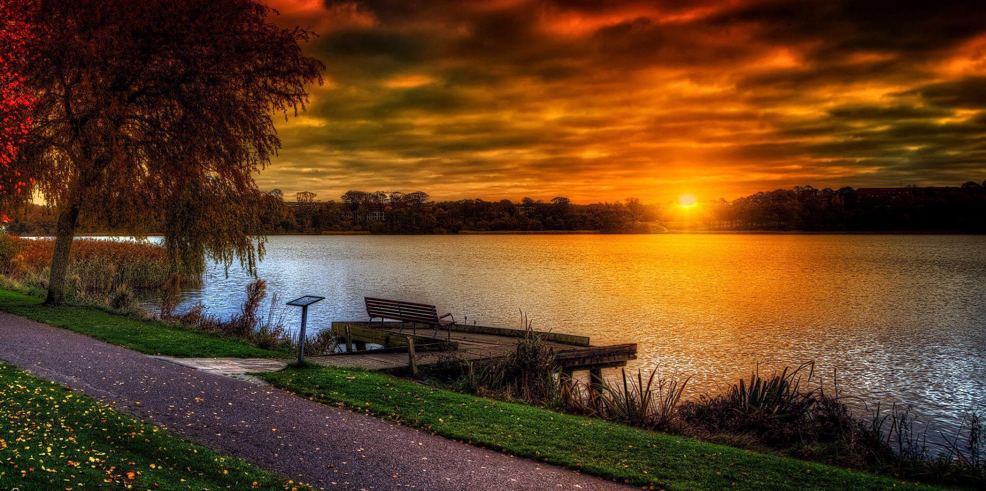 bench-near-lake
