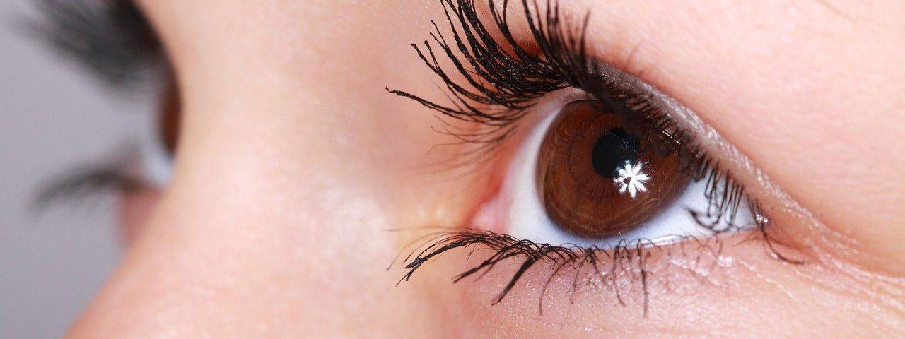 eye brown twinkle close up 1280x480