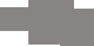 triangle.ncOptometricsociety.logo_