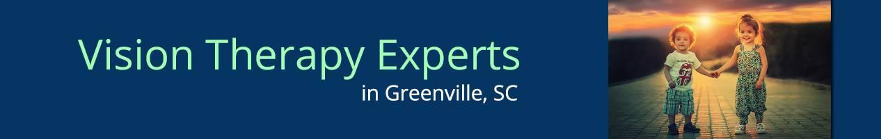 Greenville-VTExperts-banner-copy-copy