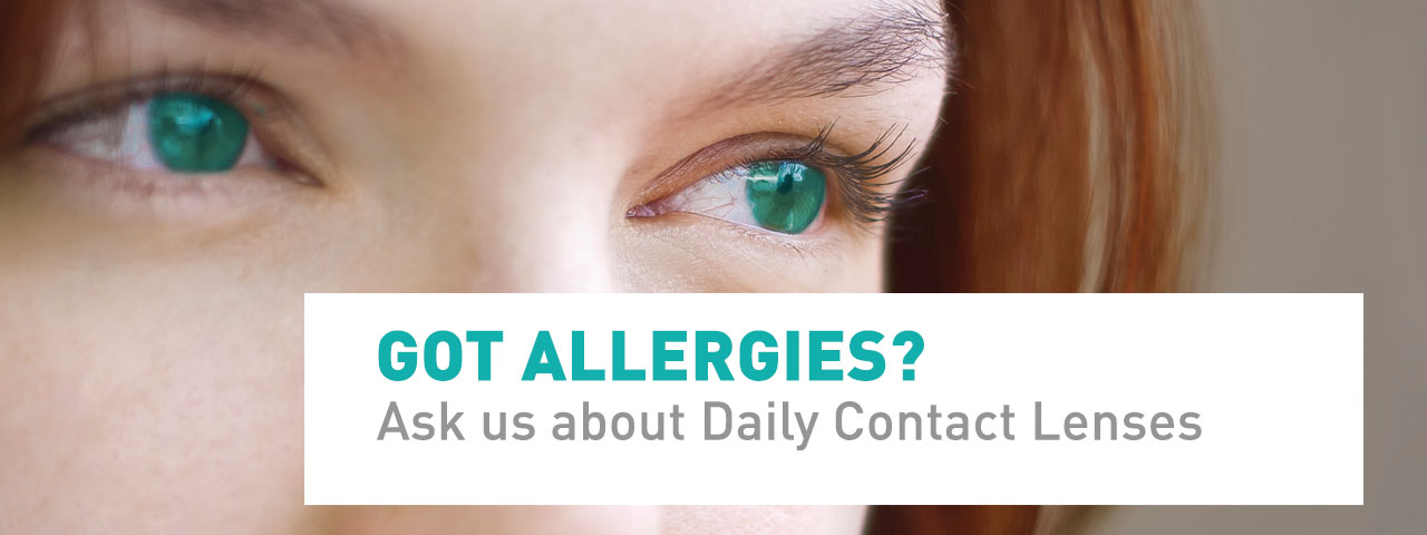 Dailies-for-Allergies-Slideshow