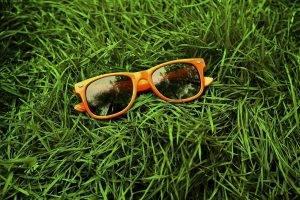 orange sunglasses in grass