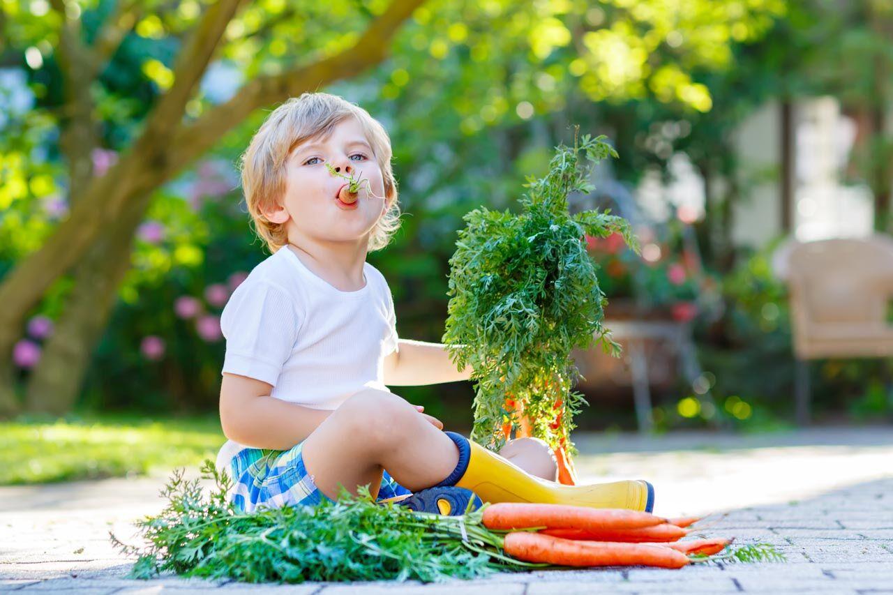 eye nutrition boy 1280x853_preview2.jpeg