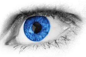 eyes blue closeup