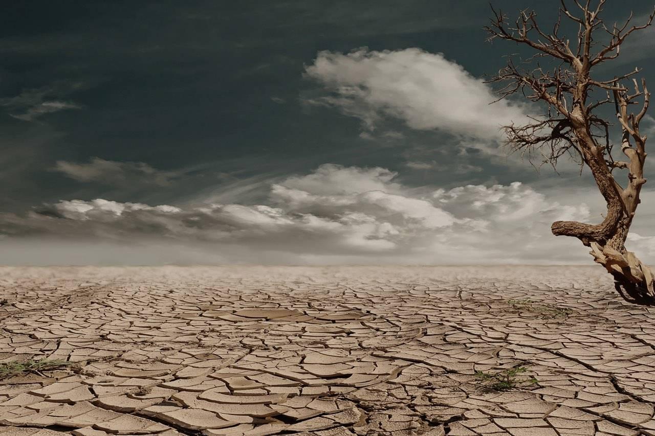 landscape-desert
