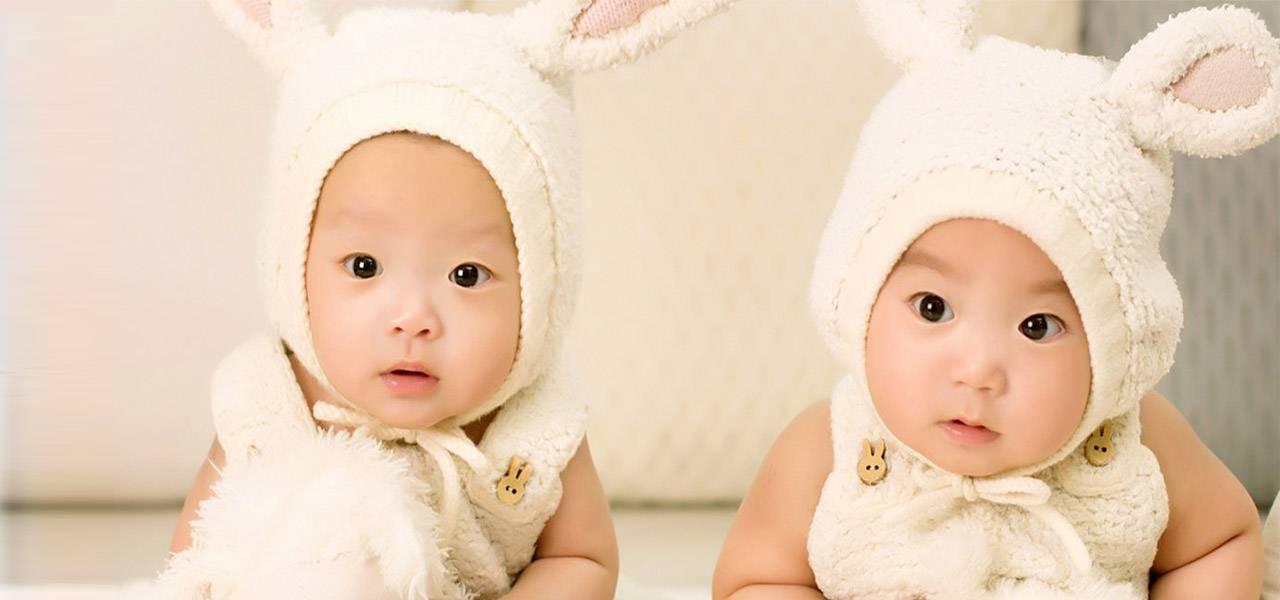 asian-babies-as-bunnies