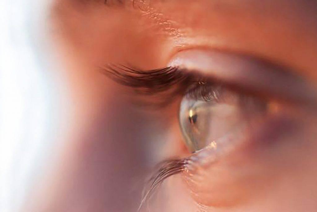 eric eyeprofile