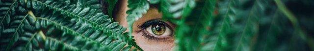 eye-peeking-from-fern_1024x168-640x105