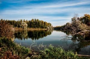 Medical Plans & Vision Plans, Shadow Creek