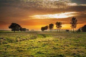 Sunset, Eye Insurance, TSO Farmers Branch