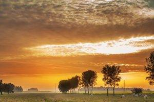 landscape_farmland-background_med