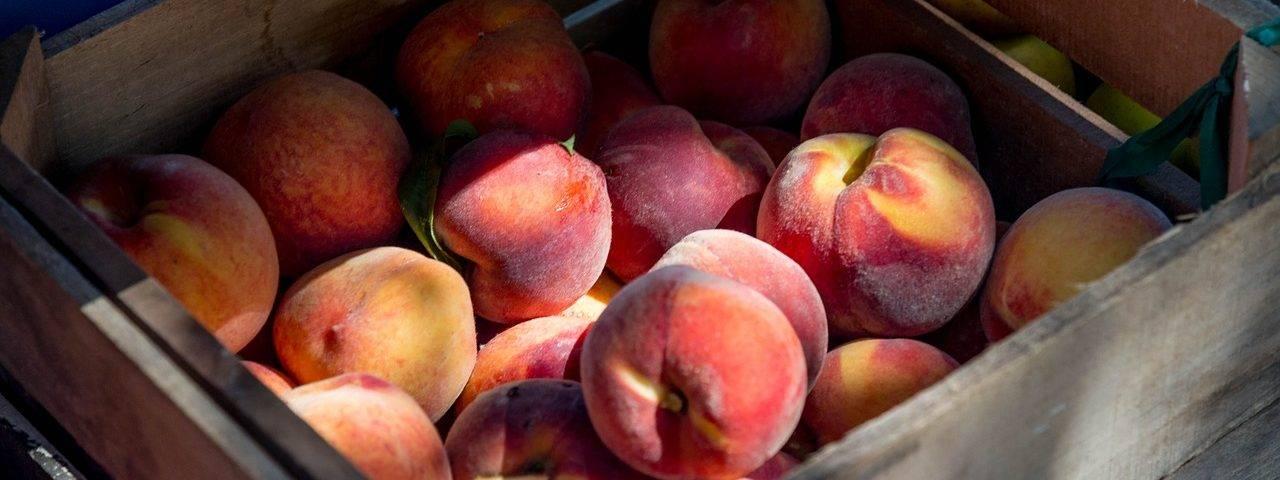 peaches-2892013_1280-1280x480