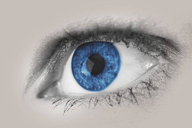 eye blue close up 640x427