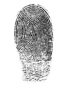 fingerprint-1382652_640-240x300