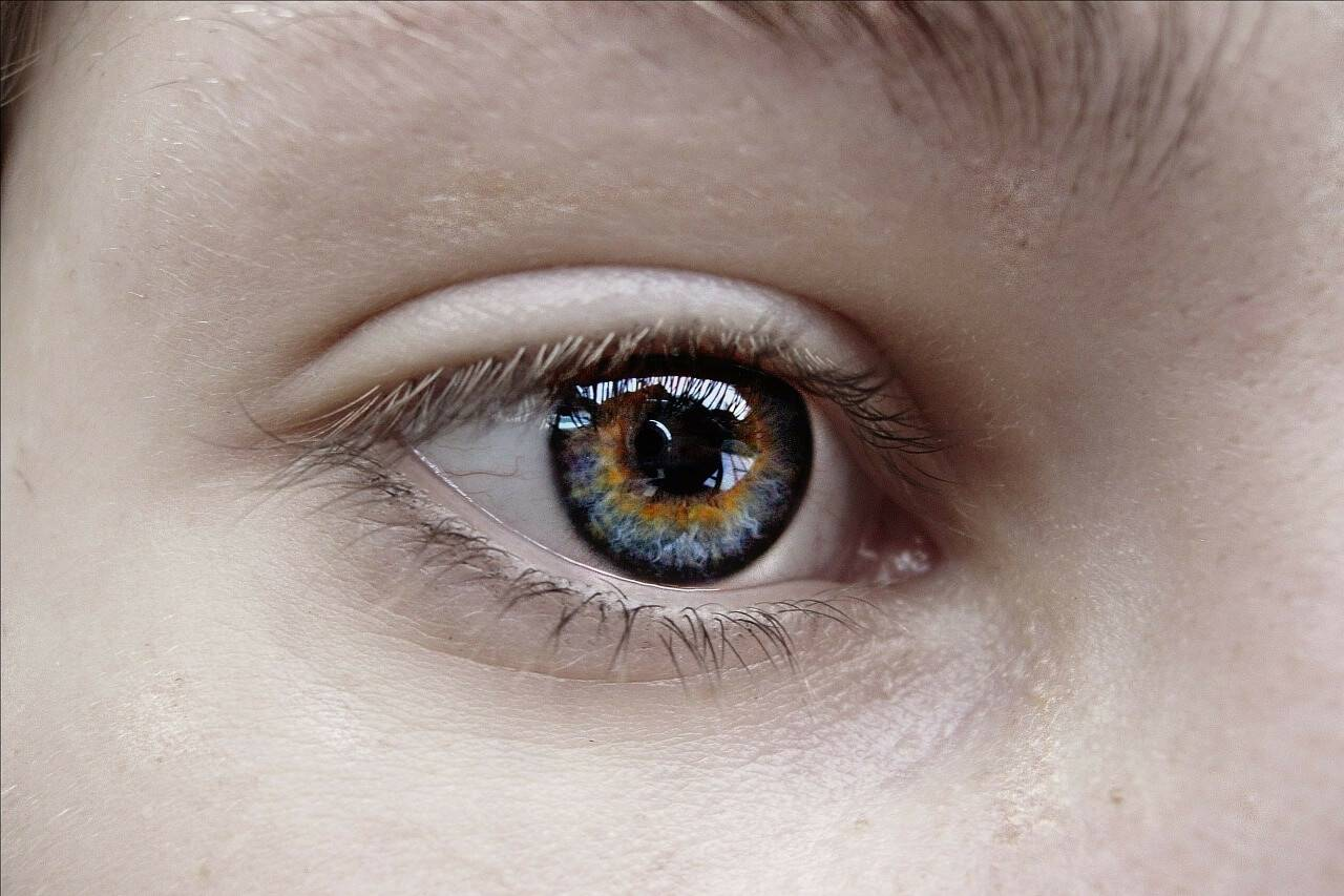 senior medical conditions and dry eye