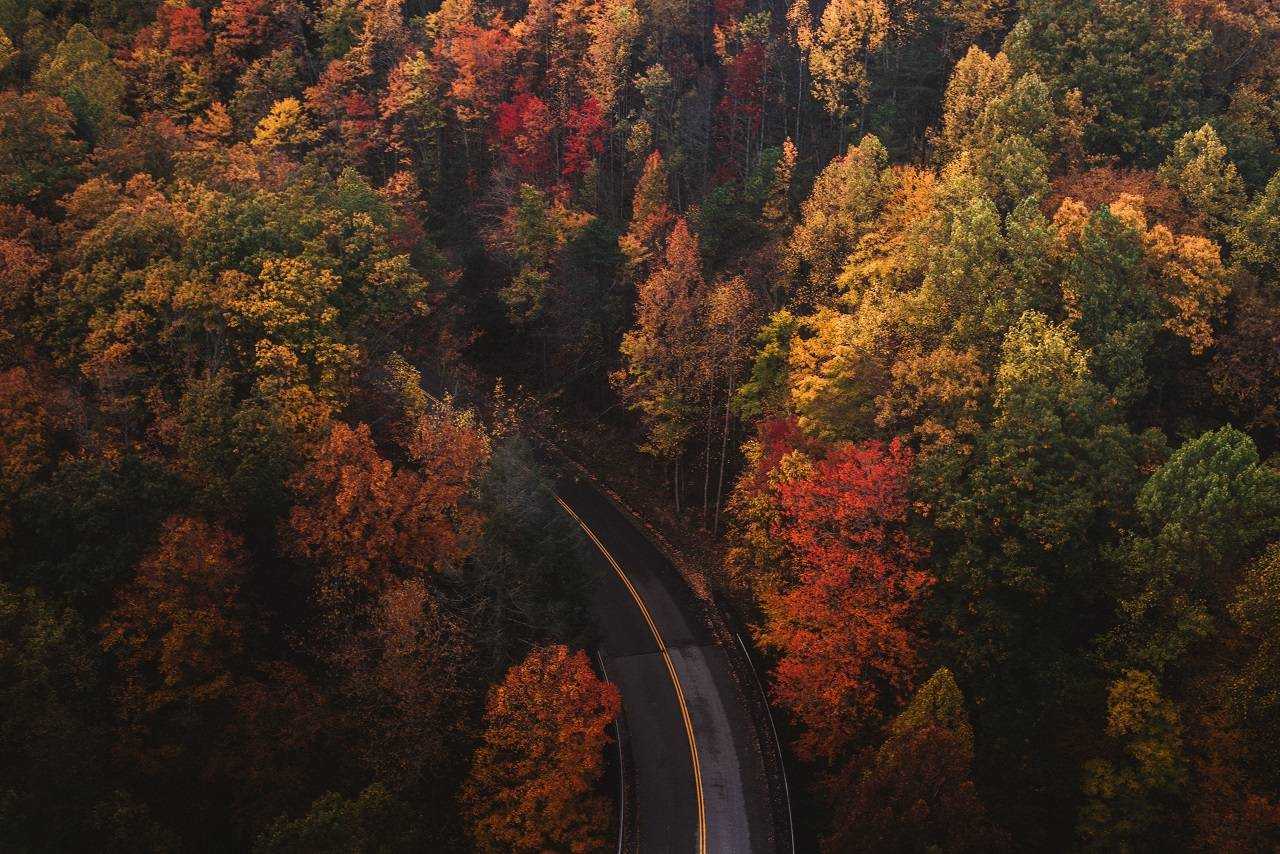 Tennessee-road