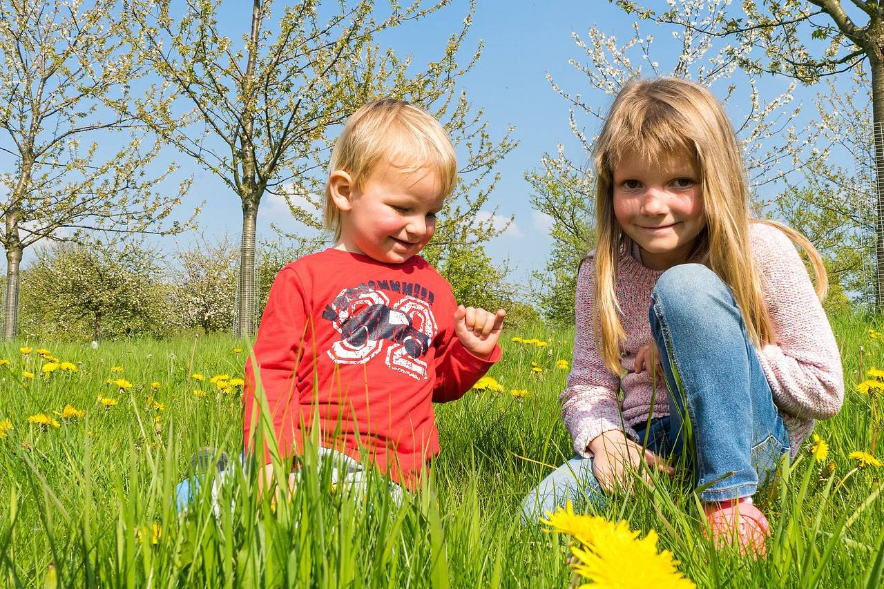 Brother-and-Sister-Outdoors-1280x853