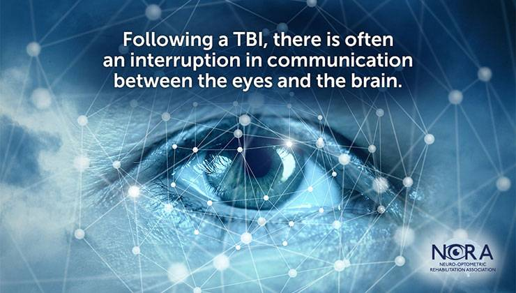 slide that says Following a TBI there is often an interruption in communication between the eyes and the brain.