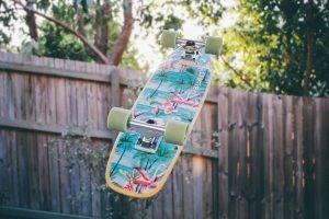 Sport skateboard flamingos bkground