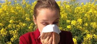 Woman Sneezing in field of flowers, eye doctor, Minto, NB