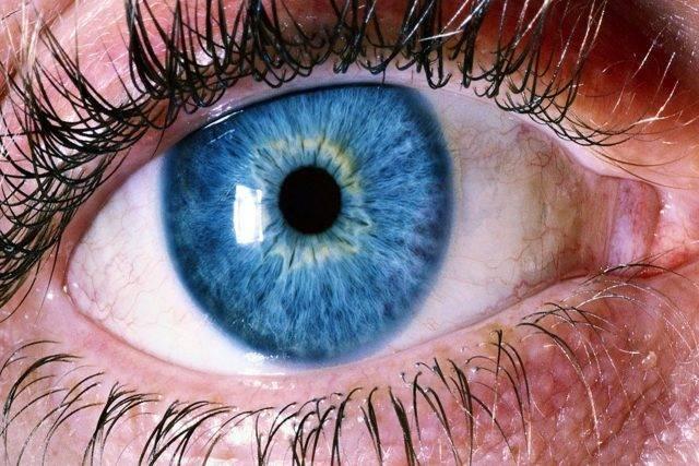 Eye Emergencies in guntersville