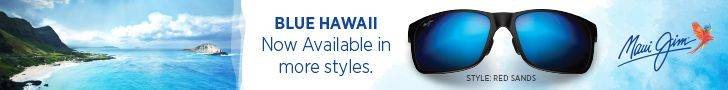 blue hawaii web banner 728×90 more styles