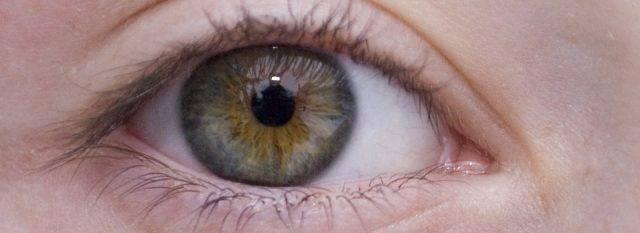 Optometrist, brown eye close-up in Danbury & Stamford, CT