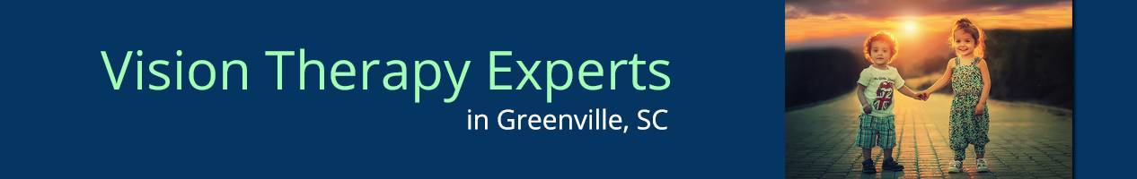 Greenville VTExperts banner copy copy