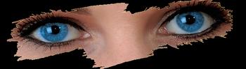 EyeKrafters Medical Optics